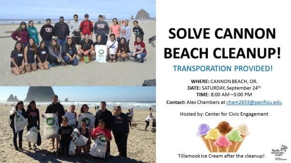 solve-beach-cleanup
